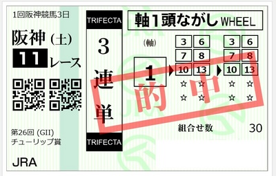 201190302阪神11R.jpg