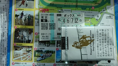 20190210東京9R.JPG
